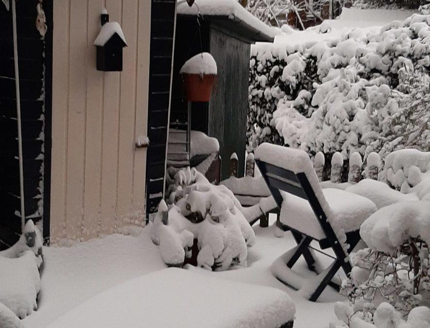 Laat je niet ondersneeuwen !